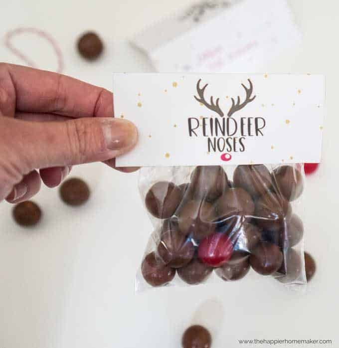 Free reindeer nose printable gift tags are an easy DIY Christmas gift that kids especially will love!