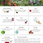 this gardening schedule helps you plan your gardening tasks year round, printable for easy reference