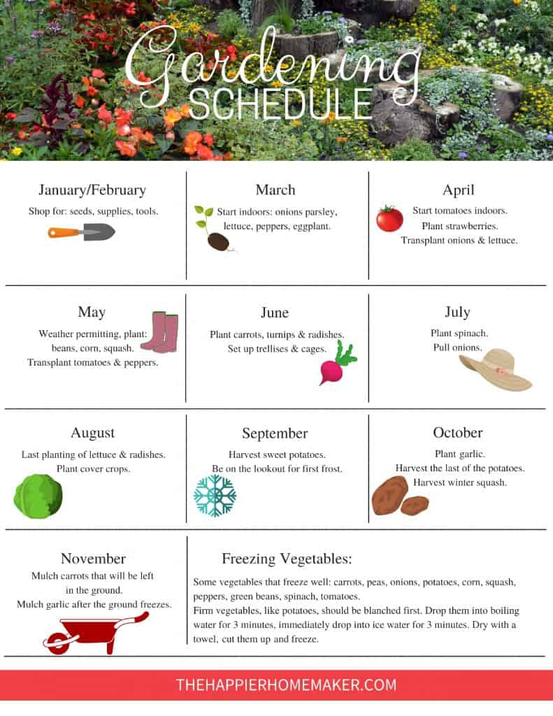 Garden Planning Schedule | Free Printable Garden Task Plan