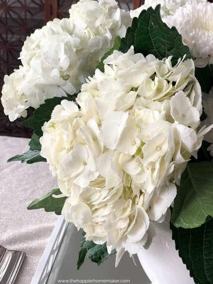 A close up photo of a white hydrangea