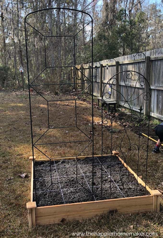 wooden raised garden bed with trellis on one side