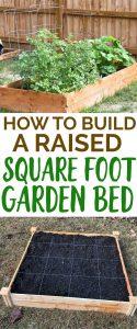 raised square foot garden bed cedar kit