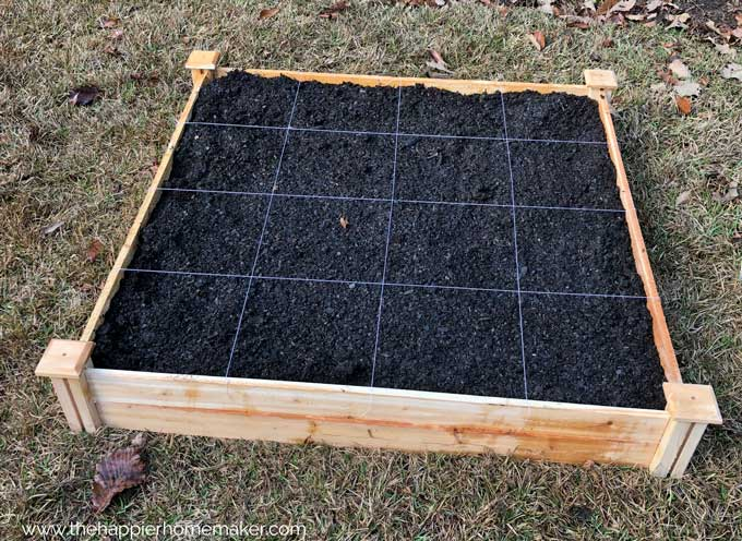 wooden raised garden bed with 4 by 4 grid marked in string
