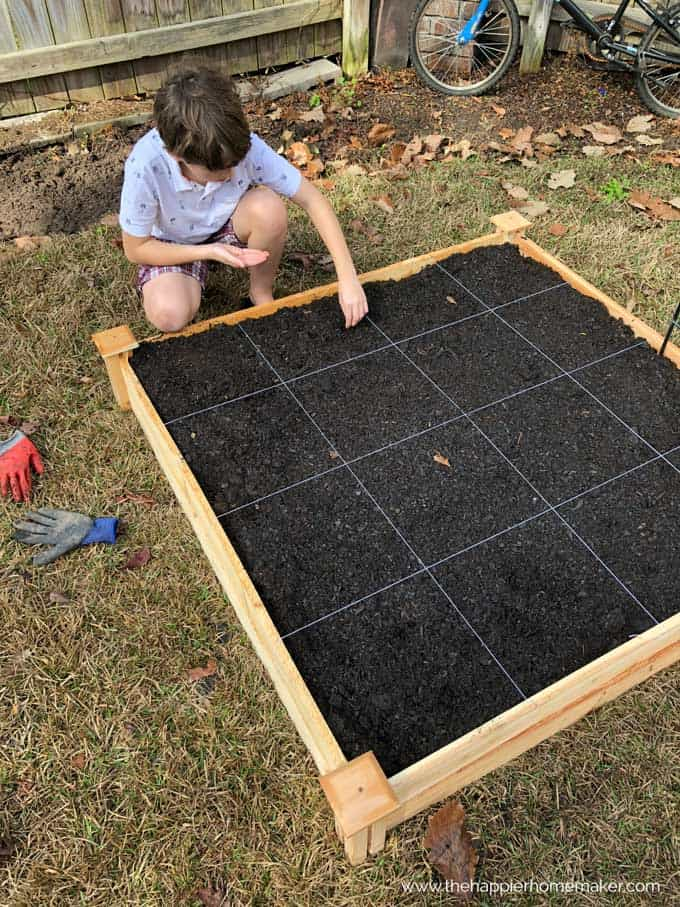 A little boy kneeling planting seeds in wooden raised garden bed