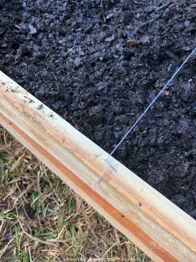 close up of wooden raised garden bed edge with string attached to one side