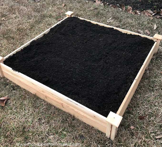 wooden raised garden bed filled with fresh dirt