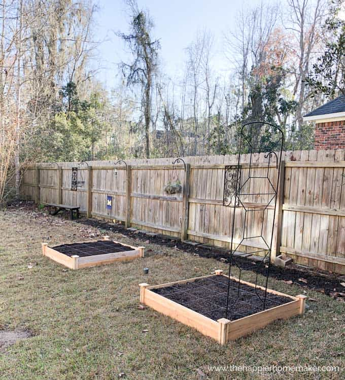 raised cedar square foot garden kit