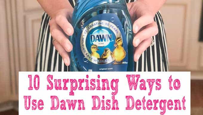 10 Surprising Uses for Dawn Dish Detergent | Homemaking Hacks