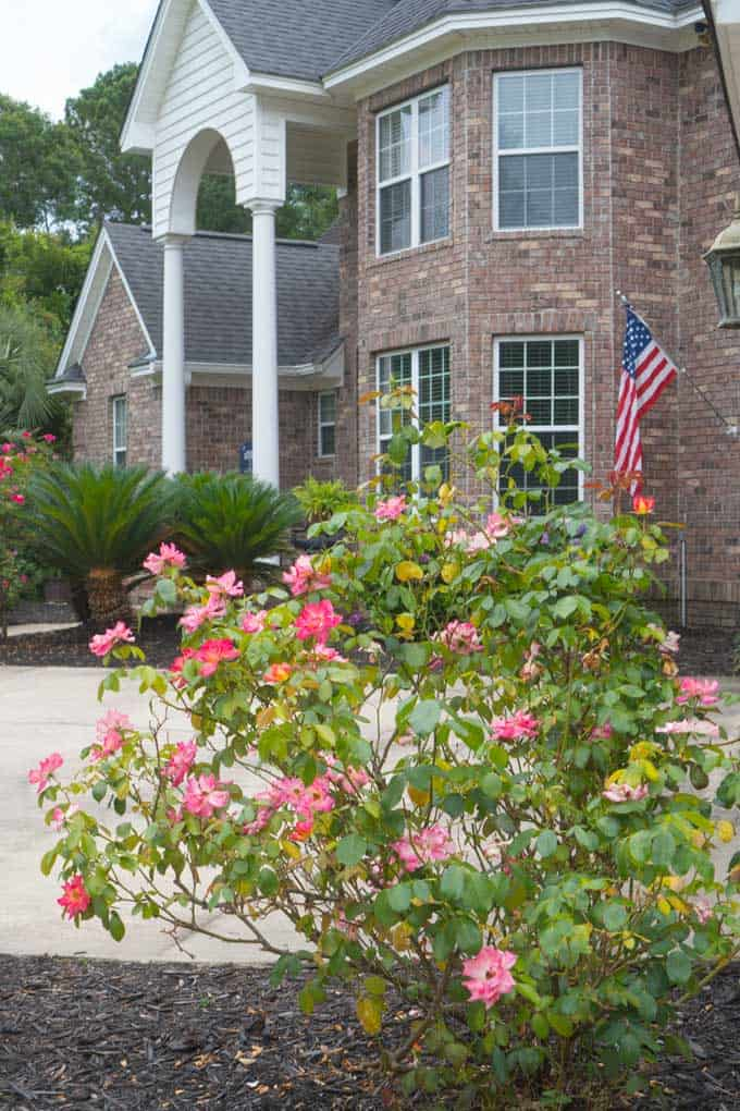 A close up of a flower garden in front of a brick home with white two story columns
