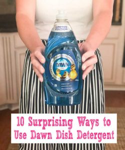 holding dawn dish detergent ways to use