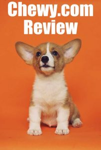 Chewy.com review puppy corgi