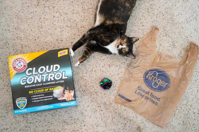 calico cat laying on floor with box of cloud control litter and kroger bag