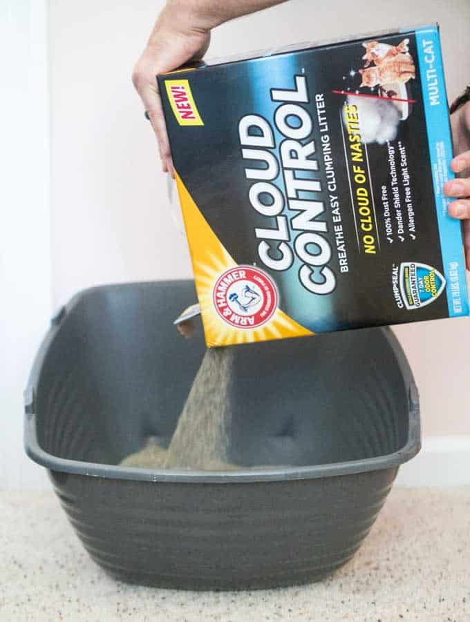 pouring cloud control litter into litter box