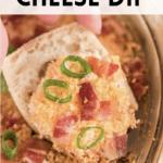 charleston cheese dip on tortilla chip