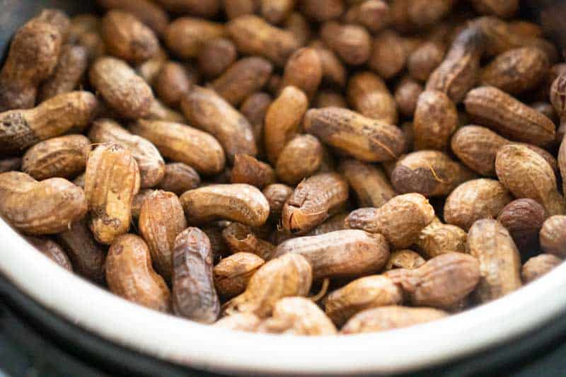 close up of boiled peanuts in instant pot