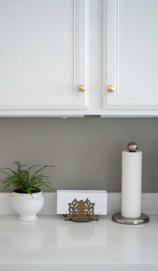 plant, envelope holder, and paper towels on counter