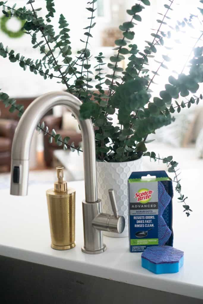 sink faucet with vase of eucalyptus and sponges