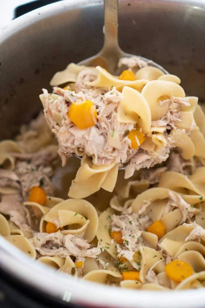 ladle of chicken noodle soup over instant pot